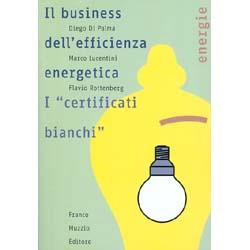 Il Business dell'Efficienza EnergeticaI certificati bianchi