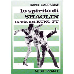 Lo Spirito di Shaolin la via del Kung Fu