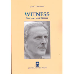 Witness Storia di una Ricerca