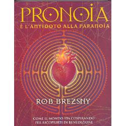 Pronoia è l'Antidoto alla ParanoiaCome il mondo intero sta cospirando per ricoprirti di benedizioni
