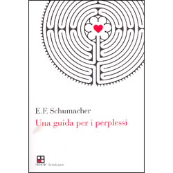 Una Guida per i PerplessiTra tecnologia ed ecologia scegliere la via della coscienza spirituale