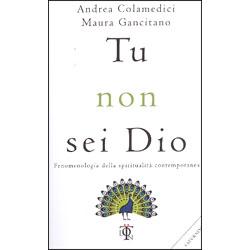 Tu Non Sei DioFenomenologia della spiritualità contemporanea
