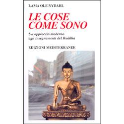 Le Cose come SonoUn approccio moderno agli insegnamenti del Buddha