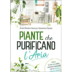 Piante che Purificano l'AriaLibera la tua casa dalle sostanze inquinanti con le piante cattura-veleni