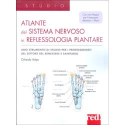 Atlante del Sistema Nervoso in Reflessologia PlantareCon una mappa per il benessere attraverso i riflessi