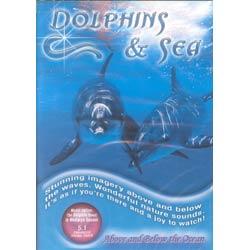 DOLPHINS & SEA
