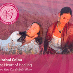 THE HEART OF HEALING - MEDITATIONS FOR TRANSFORMATION