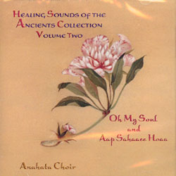 Healing Sounds of the Ancients Collection - Volume 2